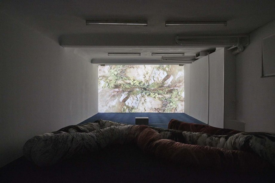 Carolina Caycedo, Esto no es agua / This is not water, 2015 und Foresight Filaments, 2018, Installation view basis 2018, courtesy the artist and instituto de visión, Bogotá, Foto: Günther Dächert