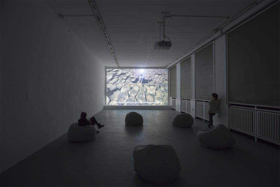 Installation View, Sarah Browne - The Invisible Limb, basis 2014, photo: Katrin Binner