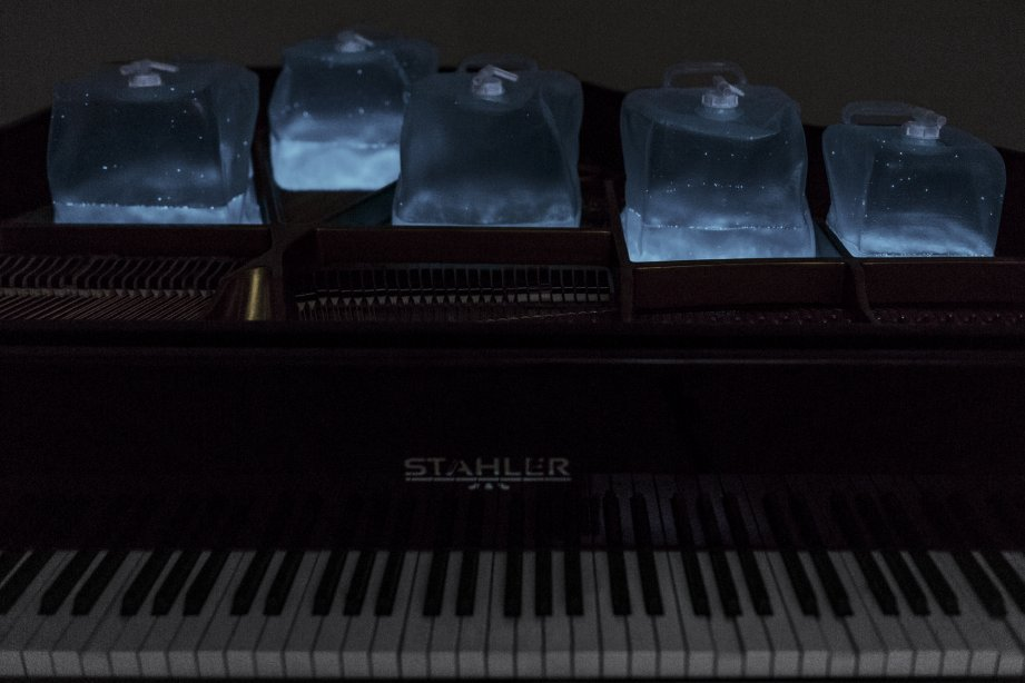 Andreas Greiner, From Strings To Dinosaurs, 2015, sound inducing bioluminescent light